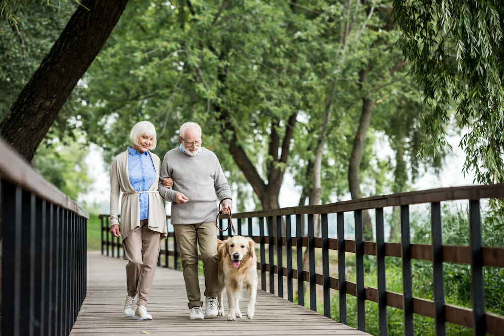 senior couple walking across wooden bridge with dog on leash.